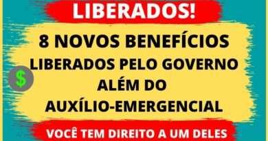 8 Benefícios Liberado Pelo Governo